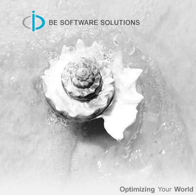 Be Software Solutions,web designing company india,business software solution india,Seo Services in India